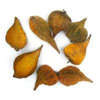 Szárazvirág alapanyag - vaddohány narancs színű