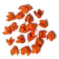 Bakuli narancs színben